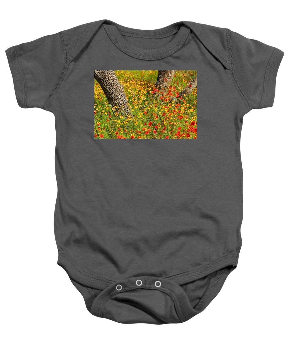 Texas Baby Onesie featuring the photograph Ranch Wildflowers And Trees 2am-110522 by Andrew McInnes