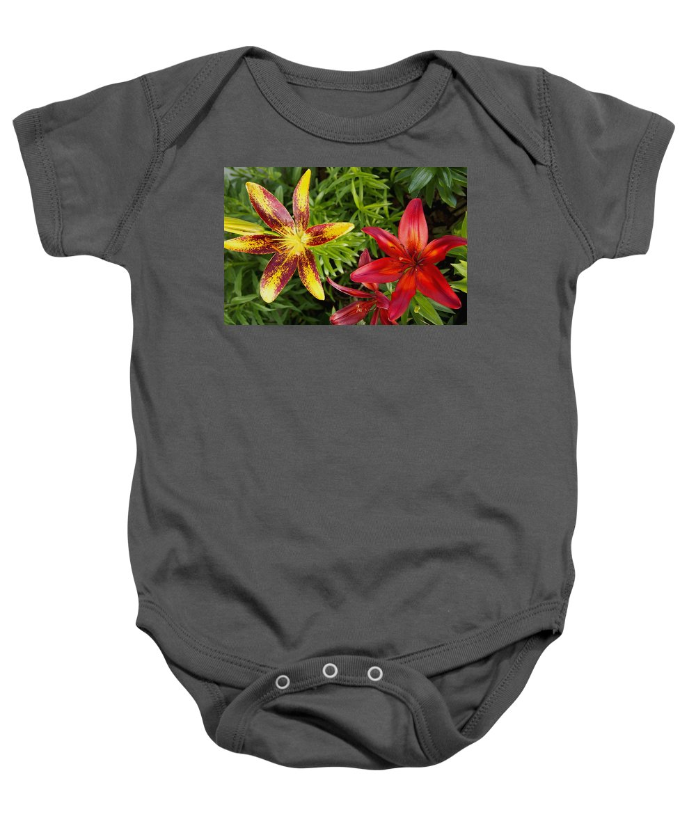 Nature Baby Onesie featuring the photograph Red And Yellow Lilly Flowers In The Garden by Amy McDaniel