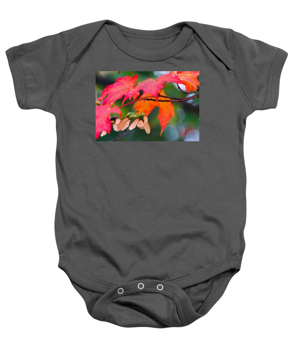 Red Leaves Baby Onesie featuring the photograph Red Maple Leaves by Amy Porter
