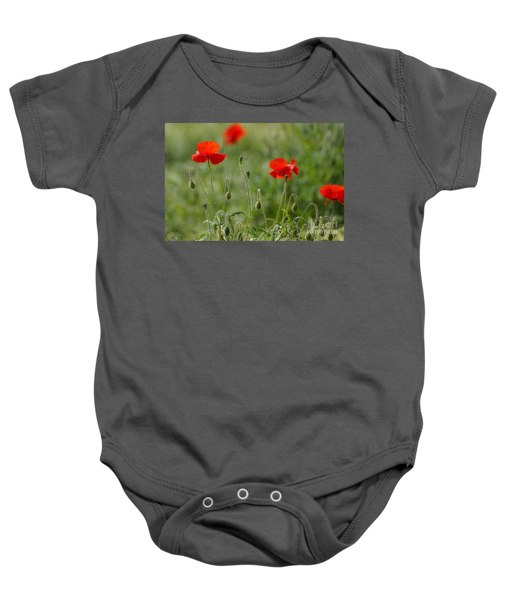 Poppies Baby Onesie featuring the photograph Red Poppies 2 by Carol Lynch