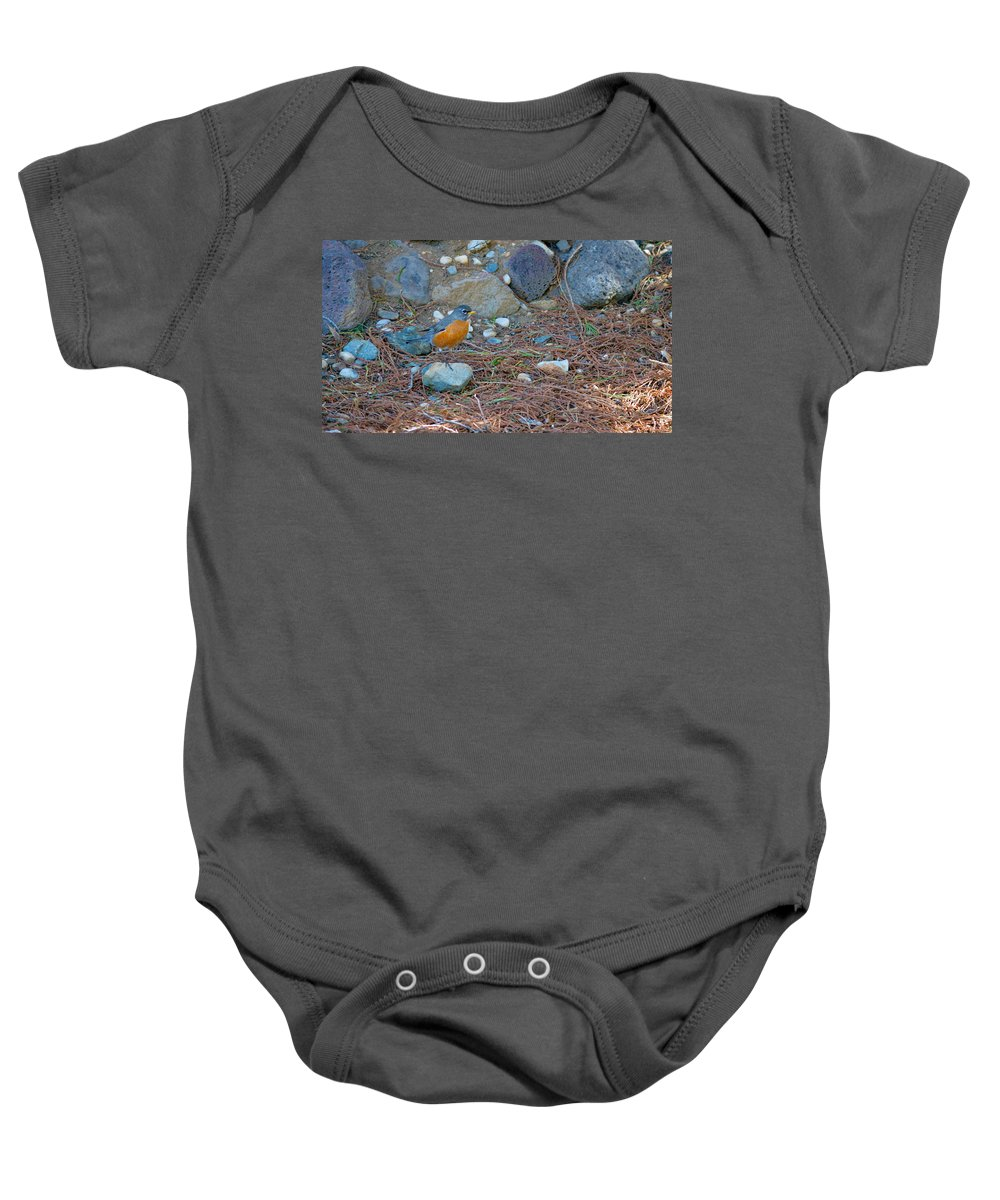 Backyard Baby Onesie featuring the photograph Red Robin by Brent Dolliver