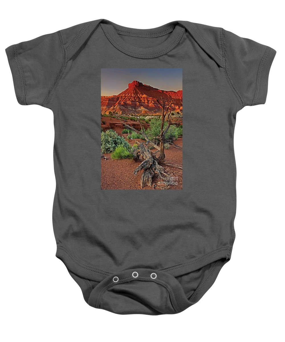 North America Baby Onesie featuring the photograph Red Rock Butte And Juniper Snag Paria Canyon Utah by Dave Welling