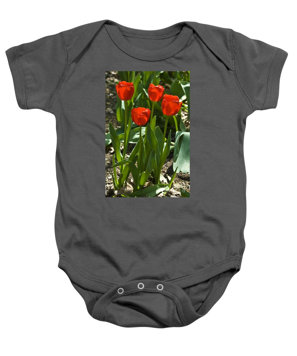 Flower Baby Onesie featuring the photograph Red Tulips by Anthony Sacco