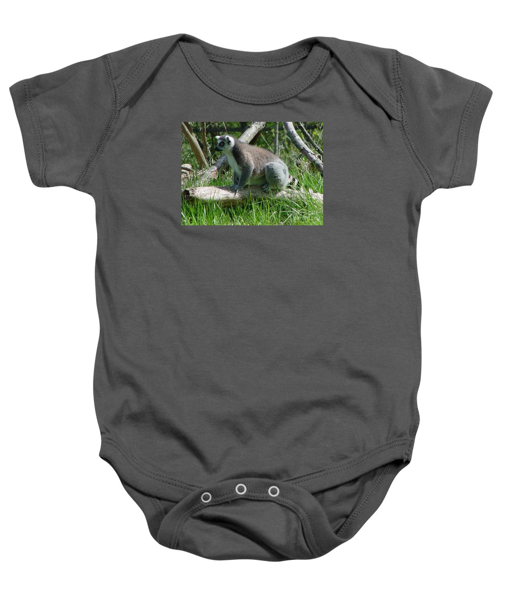 Ring Tailed Lemur Baby Onesie featuring the photograph Ring Tailed Lemur by Gary Gingrich Galleries