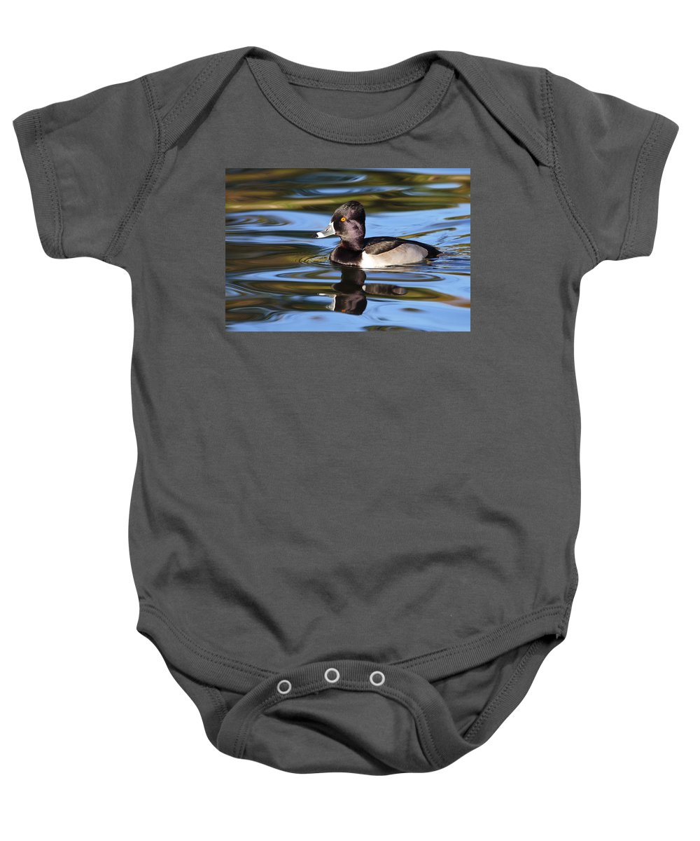 Ring-necked Duck Baby Onesie featuring the photograph Rings Around Ring-necked Duck by Andrew McInnes
