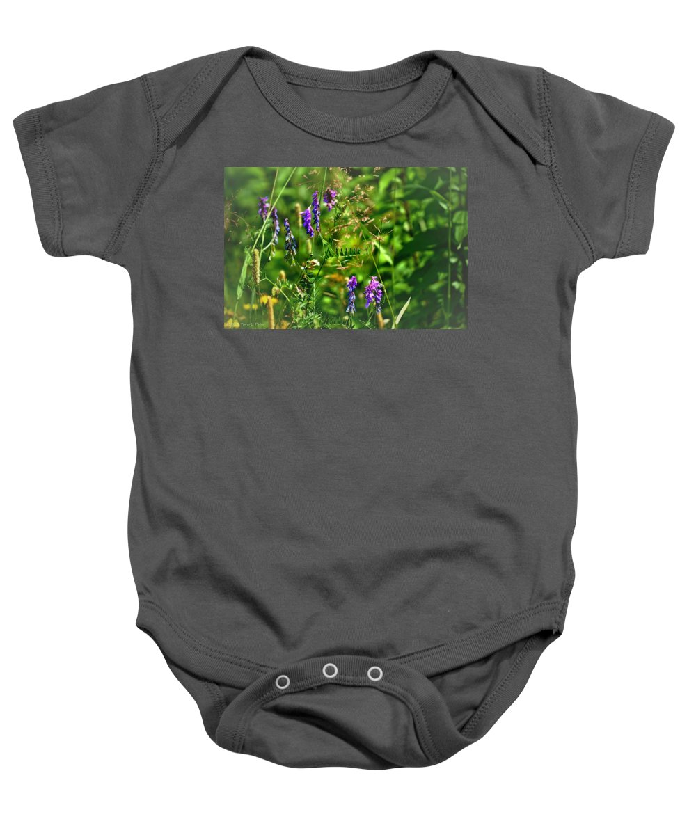 Wildflowers Baby Onesie featuring the photograph Roadside Wildflowers by Tara Potts