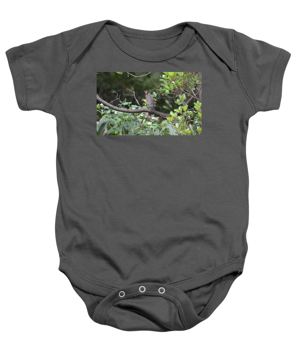 Robin In The Brush Baby Onesie featuring the photograph Robin In The Brush by Maria Urso