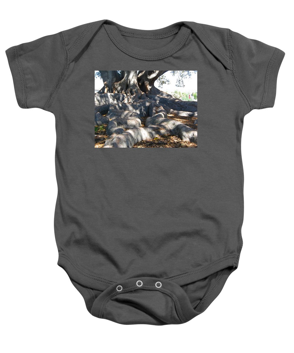 Moreton Fig Tree Baby Onesie featuring the photograph Roots Of Large Fig Tree by Denise Mazzocco