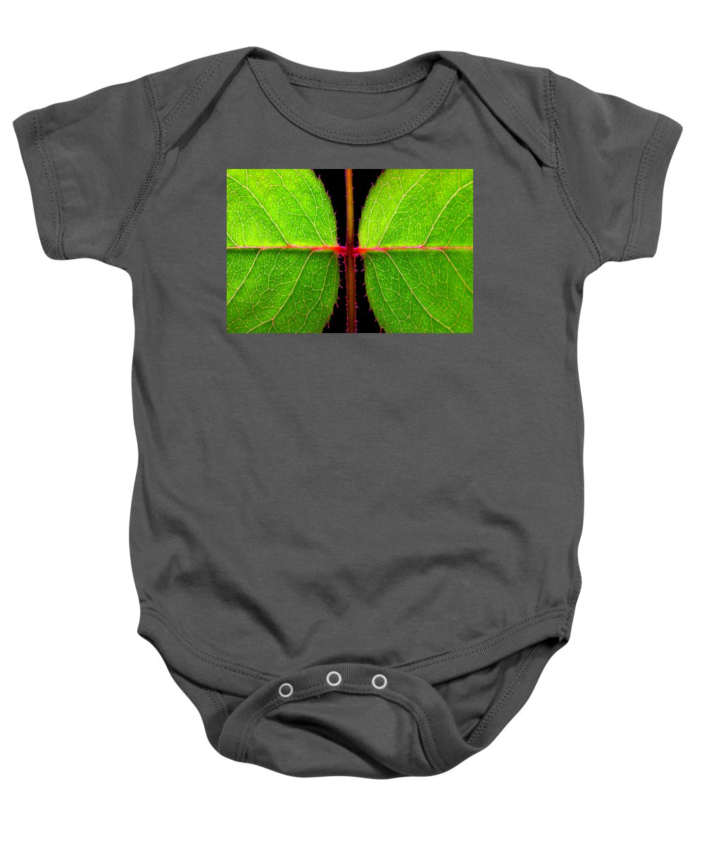 Rose Baby Onesie featuring the photograph Rose Leaves by Photophilous