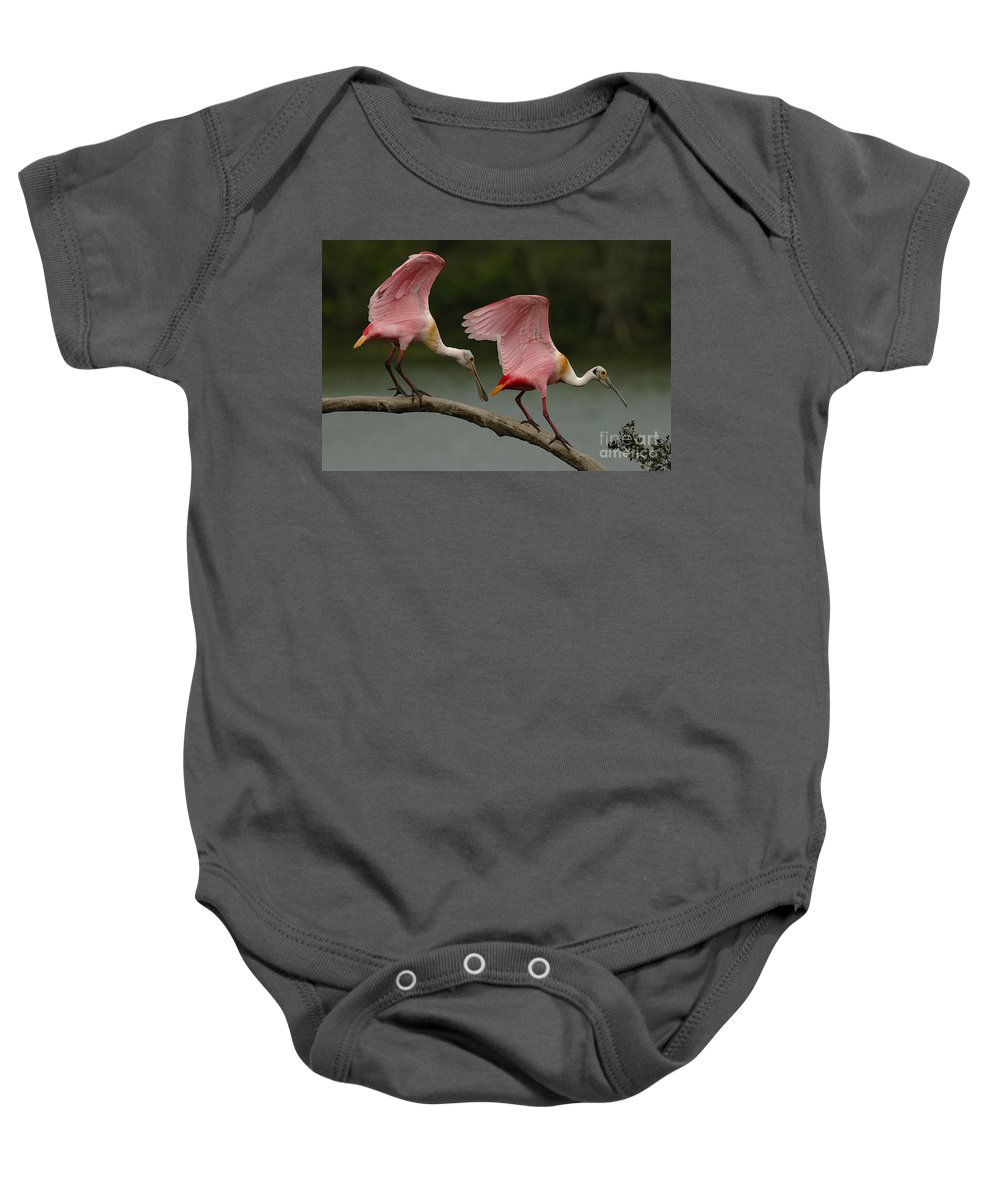 Spoonbills Baby Onesie featuring the photograph Rosiette Spoonbill Pair by Bob Christopher