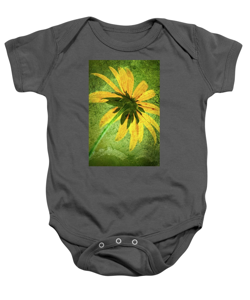 Black-eyed Susan Baby Onesie featuring the photograph Rudbeckia On Cement by Onyonet Photo Studios