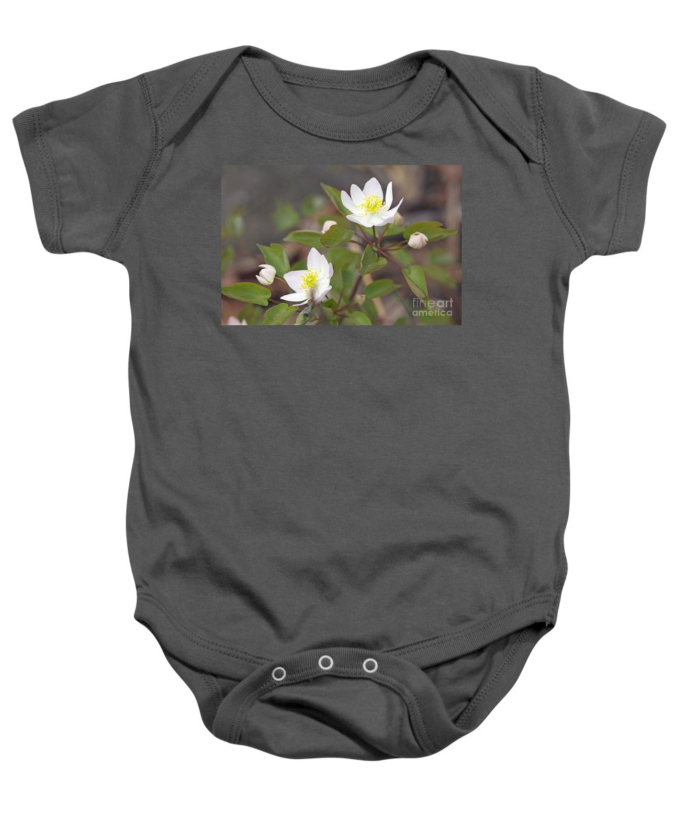 rue Anemone Baby Onesie featuring the photograph Rue Anemone Wildflower - Pale Pink - Thalictrum Thalictroides by Mother Nature