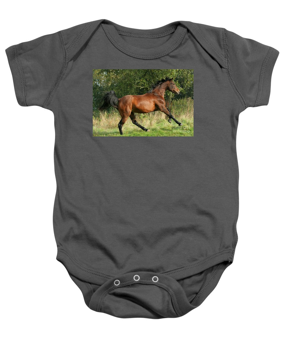 Horse Baby Onesie featuring the photograph run by Angel Ciesniarska