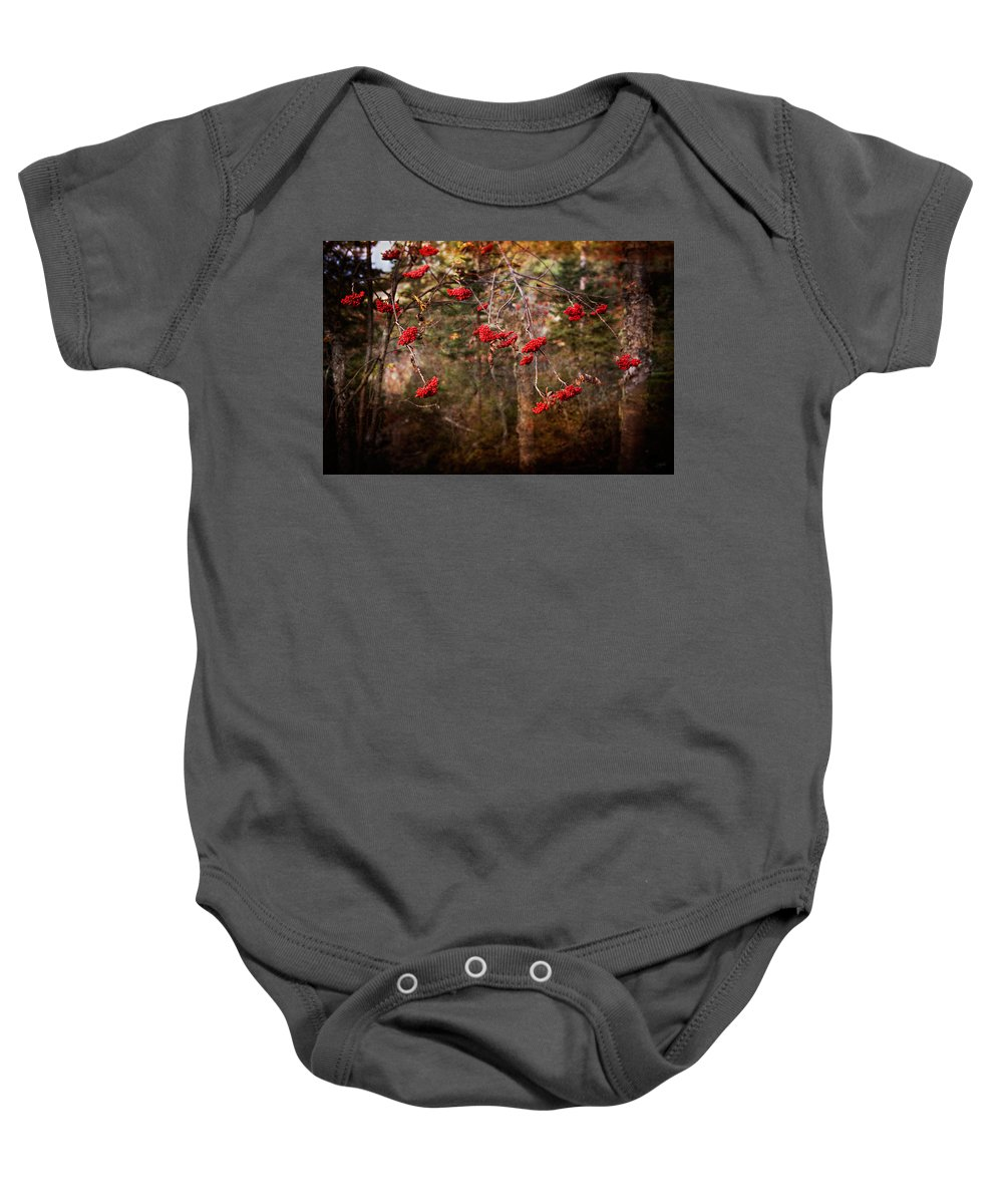 Canada Baby Onesie featuring the photograph Rustic by Doug Gibbons