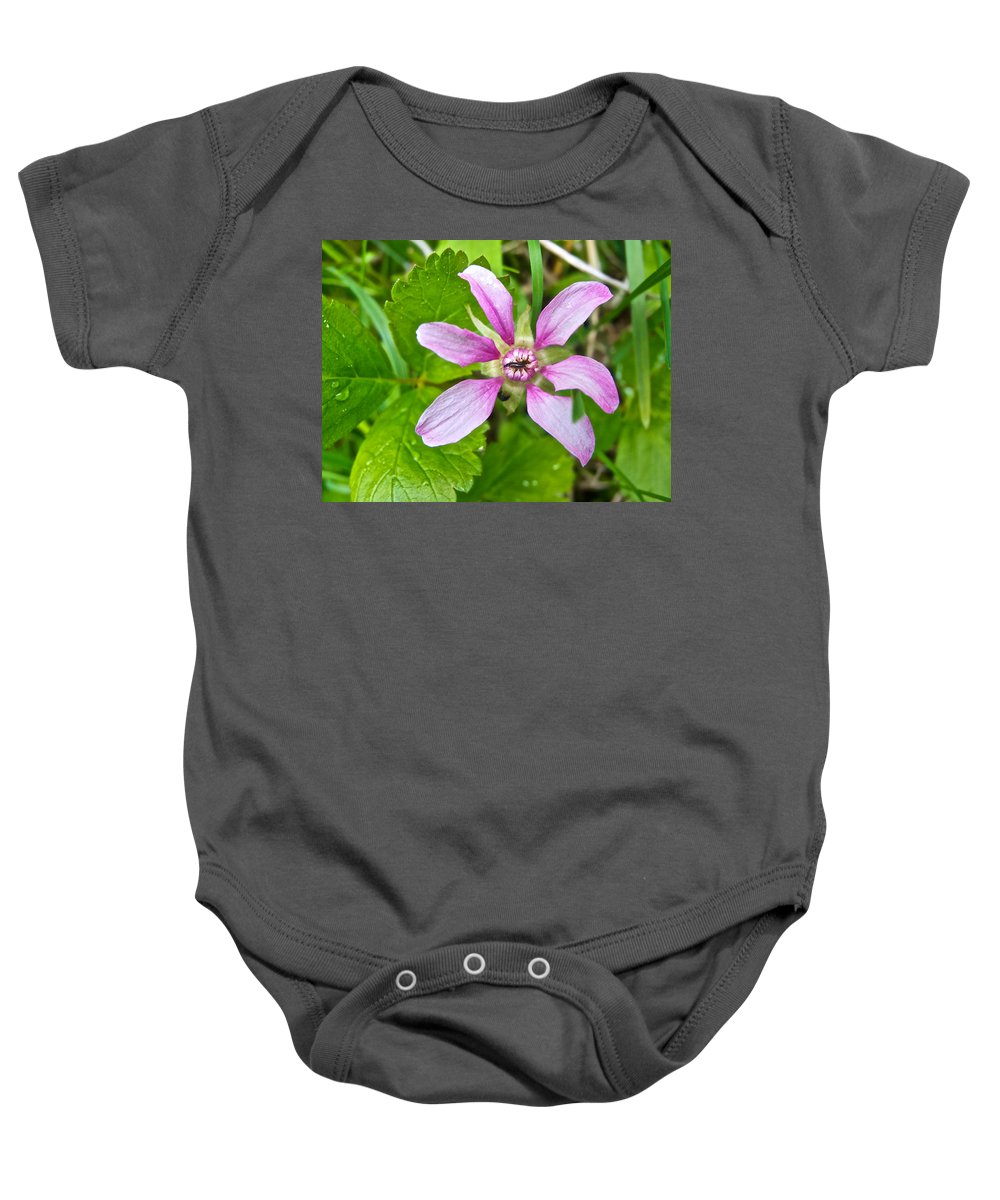 Salmonberry On Trail To Wapta Falls In Yoho Np Baby Onesie featuring the photograph Salmonberry On Trail To Wapta Falls In Yoho Np-bc by Ruth Hager