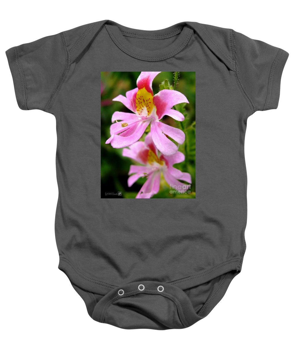 Mccombie Baby Onesie featuring the photograph Schizanthus Named Angel Wings by J McCombie