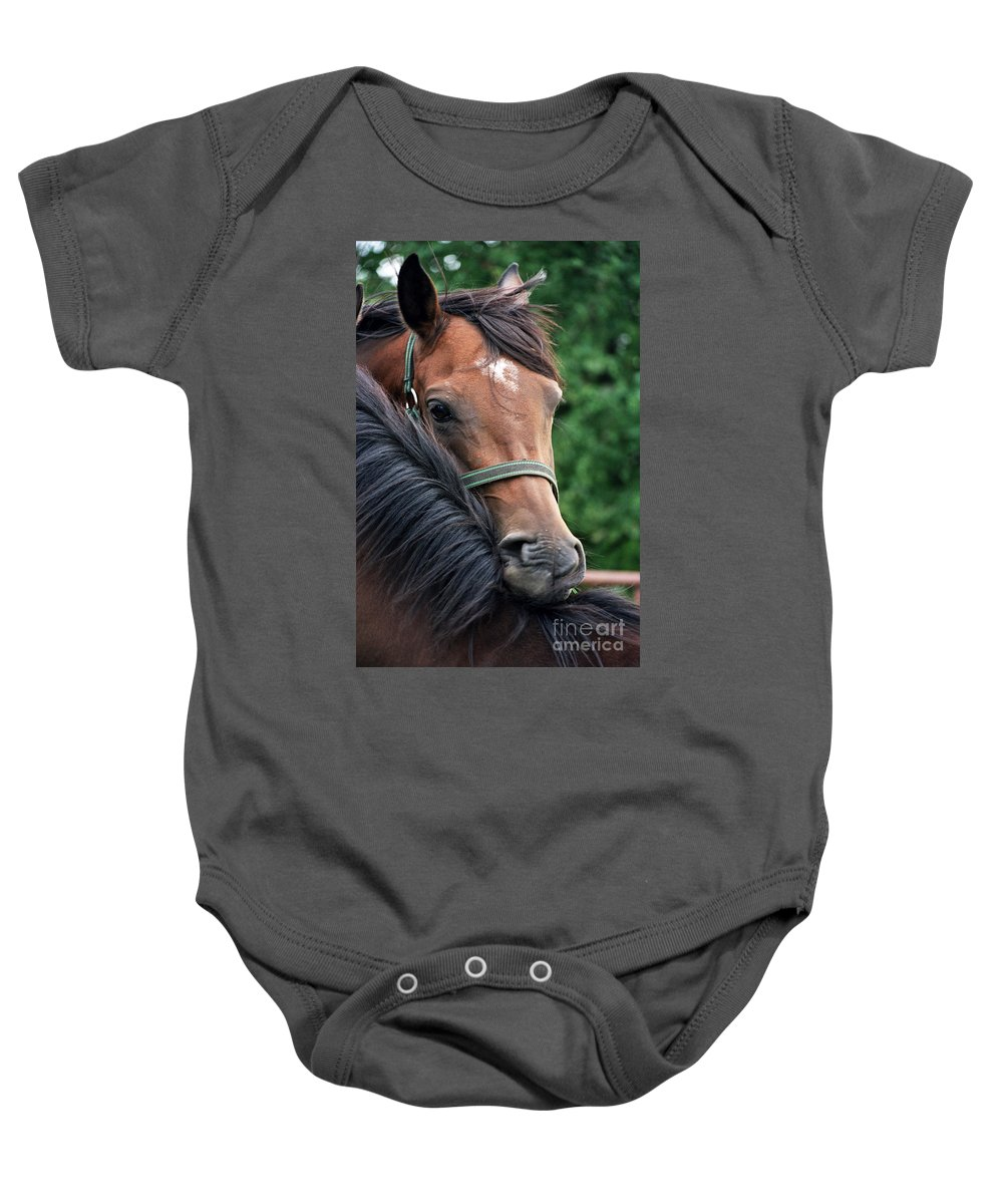 Horse Portrait Baby Onesie featuring the photograph Scratch My Back by Angel Ciesniarska