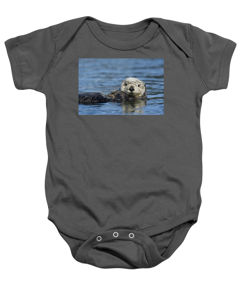 Michael Quinton Baby Onesie featuring the photograph Sea Otter Alaska by Michael Quinton