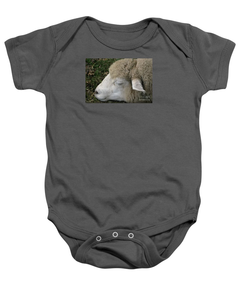 Sheep Baby Onesie featuring the photograph Sheep Sleep by Ann Horn