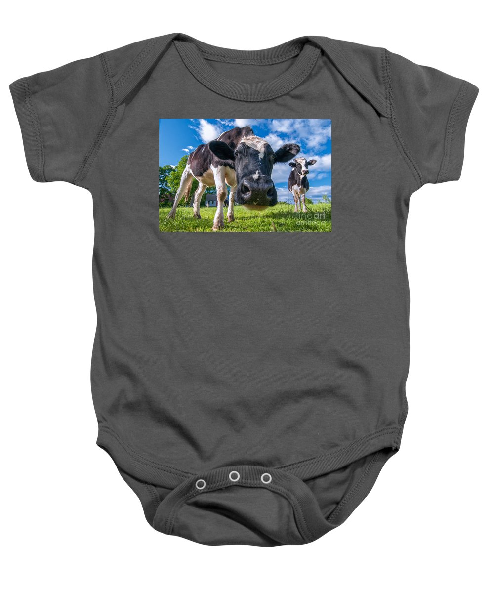 Baby Onesie featuring the photograph Simply Cows by Scott Thorp