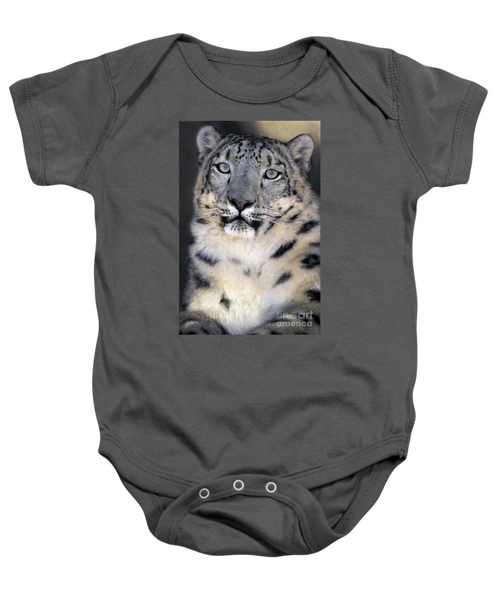 Snow Leopard Baby Onesie featuring the photograph Snow Leopard Portrait Endangered Species Wildlife Rescue by Dave Welling