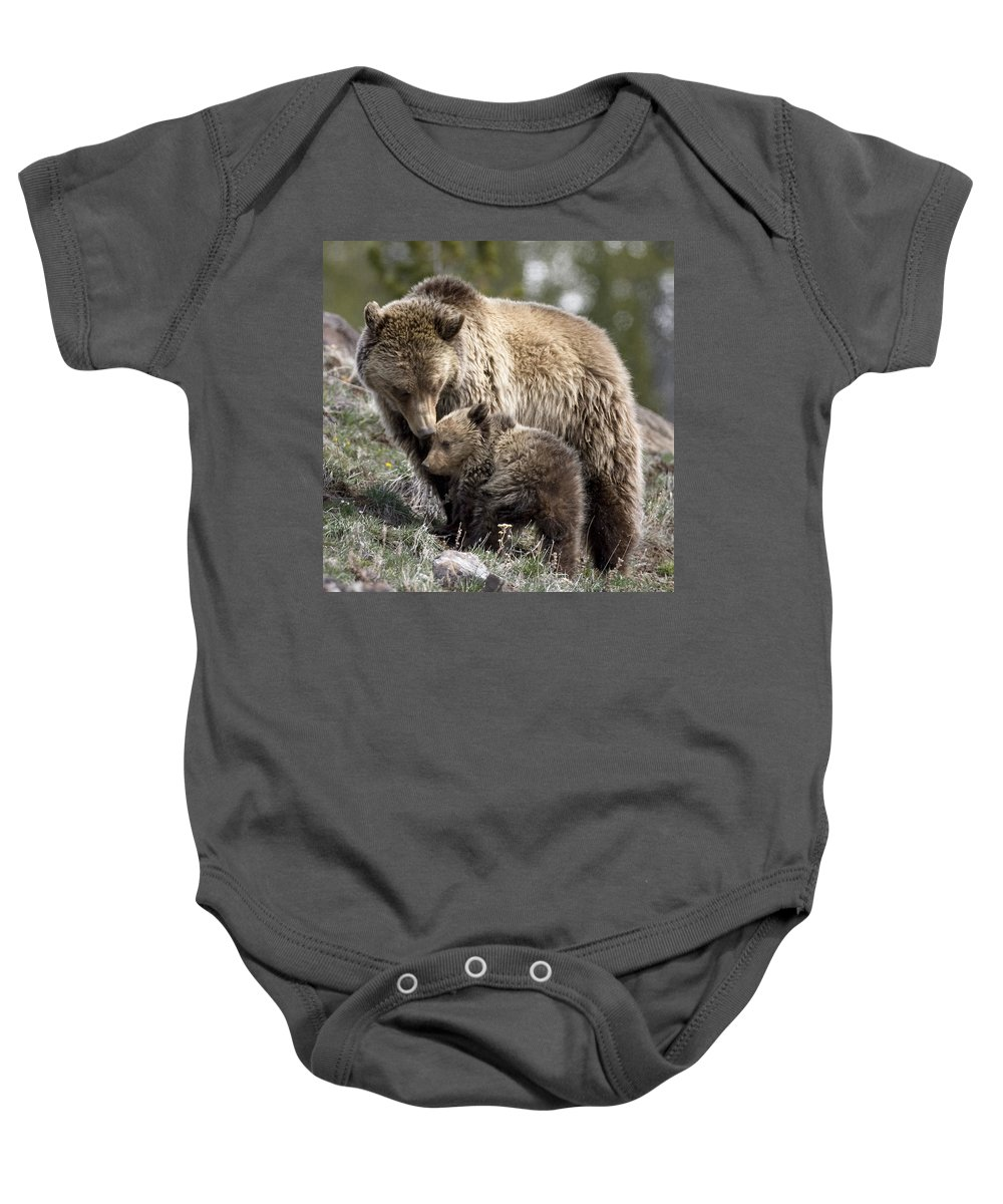 Grizzly Bears Baby Onesie featuring the photograph Someone To Watch Over Me by Max Waugh