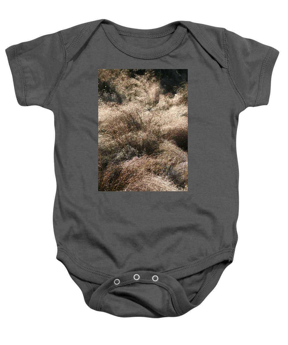 Grasses Baby Onesie featuring the photograph Sparkling Grasses by Nadine Rippelmeyer