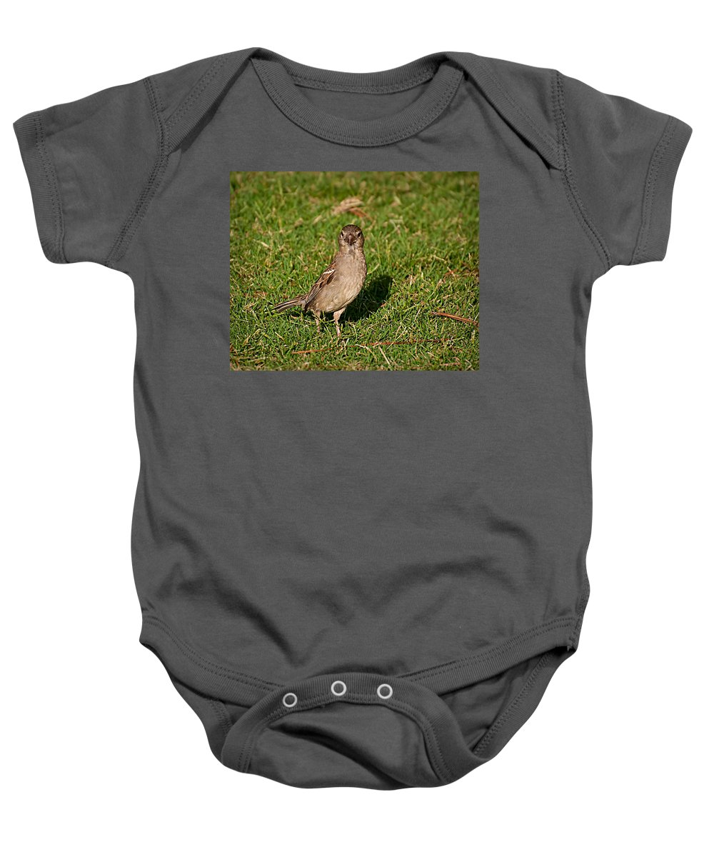 Sparrow Baby Onesie featuring the photograph Sparrow 1 by Photos By Cassandra