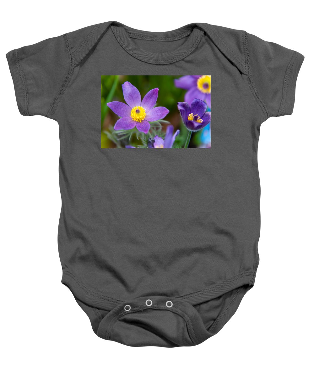Pasque Flower Baby Onesie featuring the photograph Spring Flowers 1. Flowers Of Holland by Jenny Rainbow
