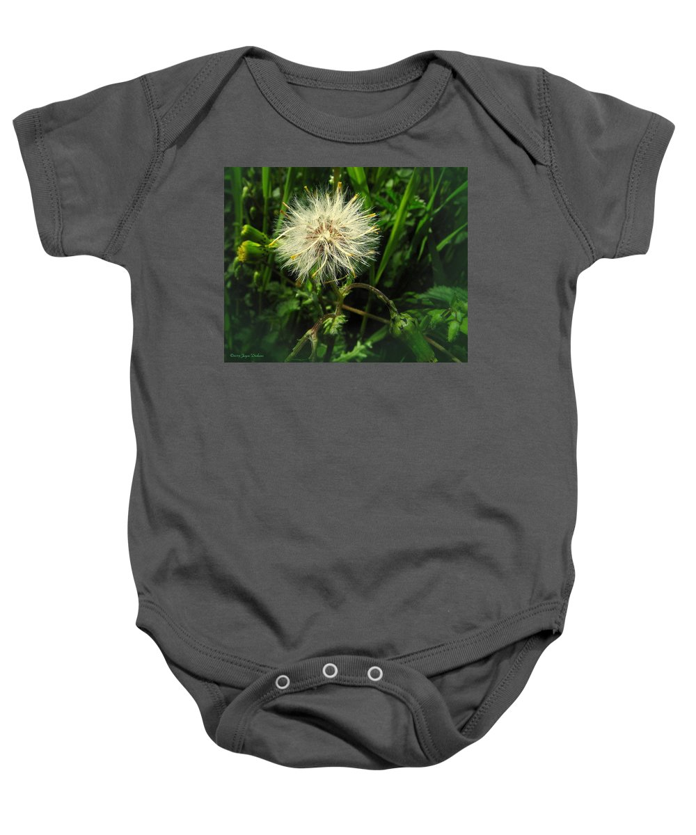 Baby Onesie featuring the photograph Spring Forest Embellishments 2 by Joyce Dickens