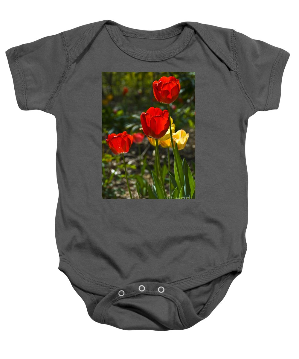 Flower Baby Onesie featuring the photograph Spring Tulips by Anthony Sacco
