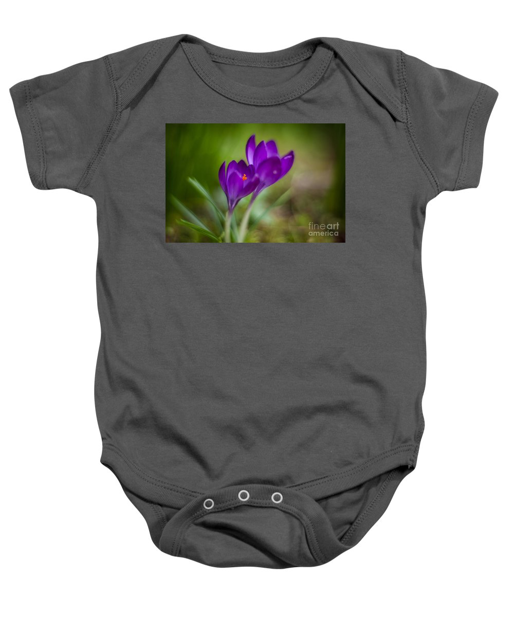 Crocus Baby Onesie featuring the photograph Springs Blossoms by Mike Reid