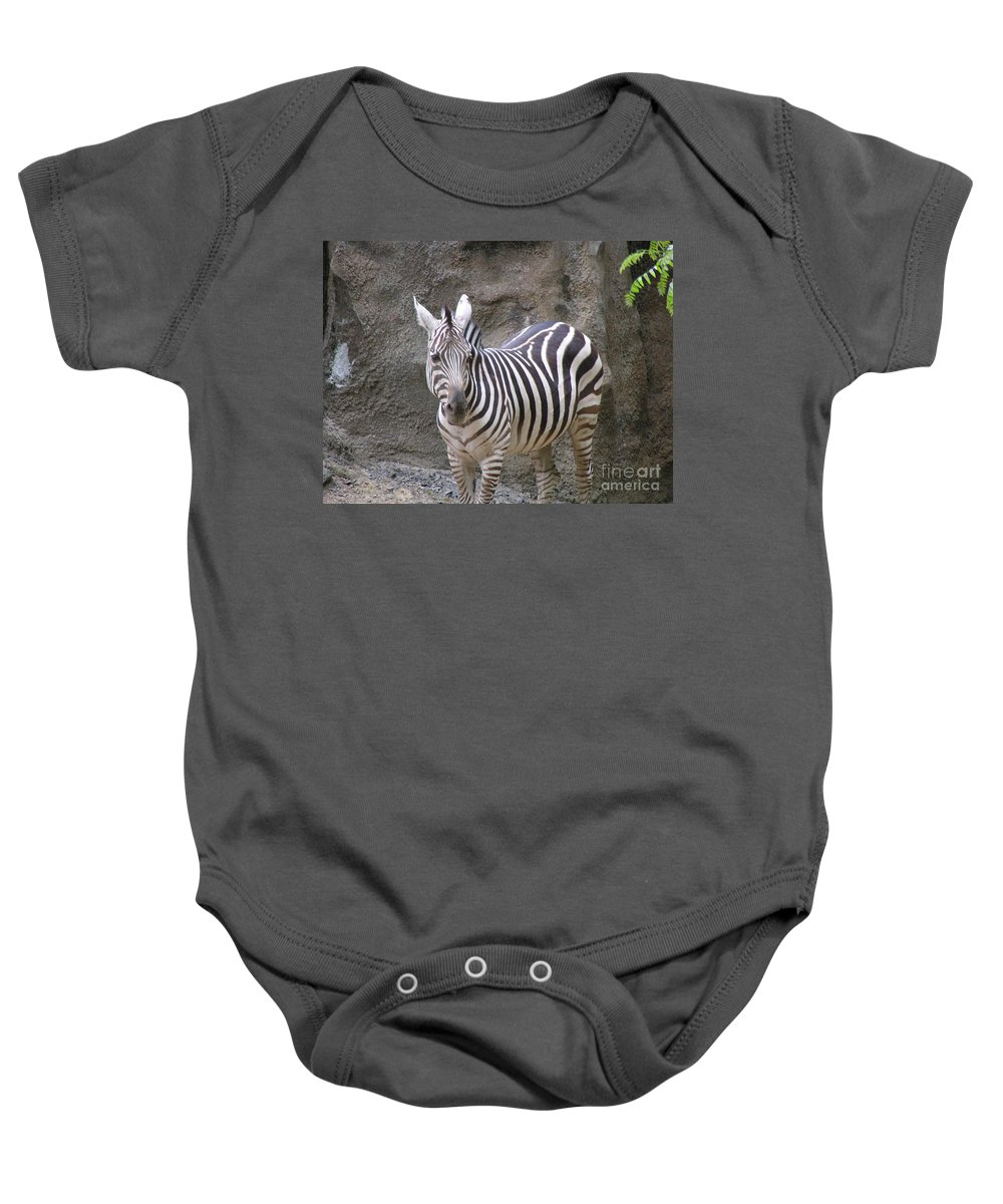 Zebra Baby Onesie featuring the photograph Standalone Zebra by Heather Jane
