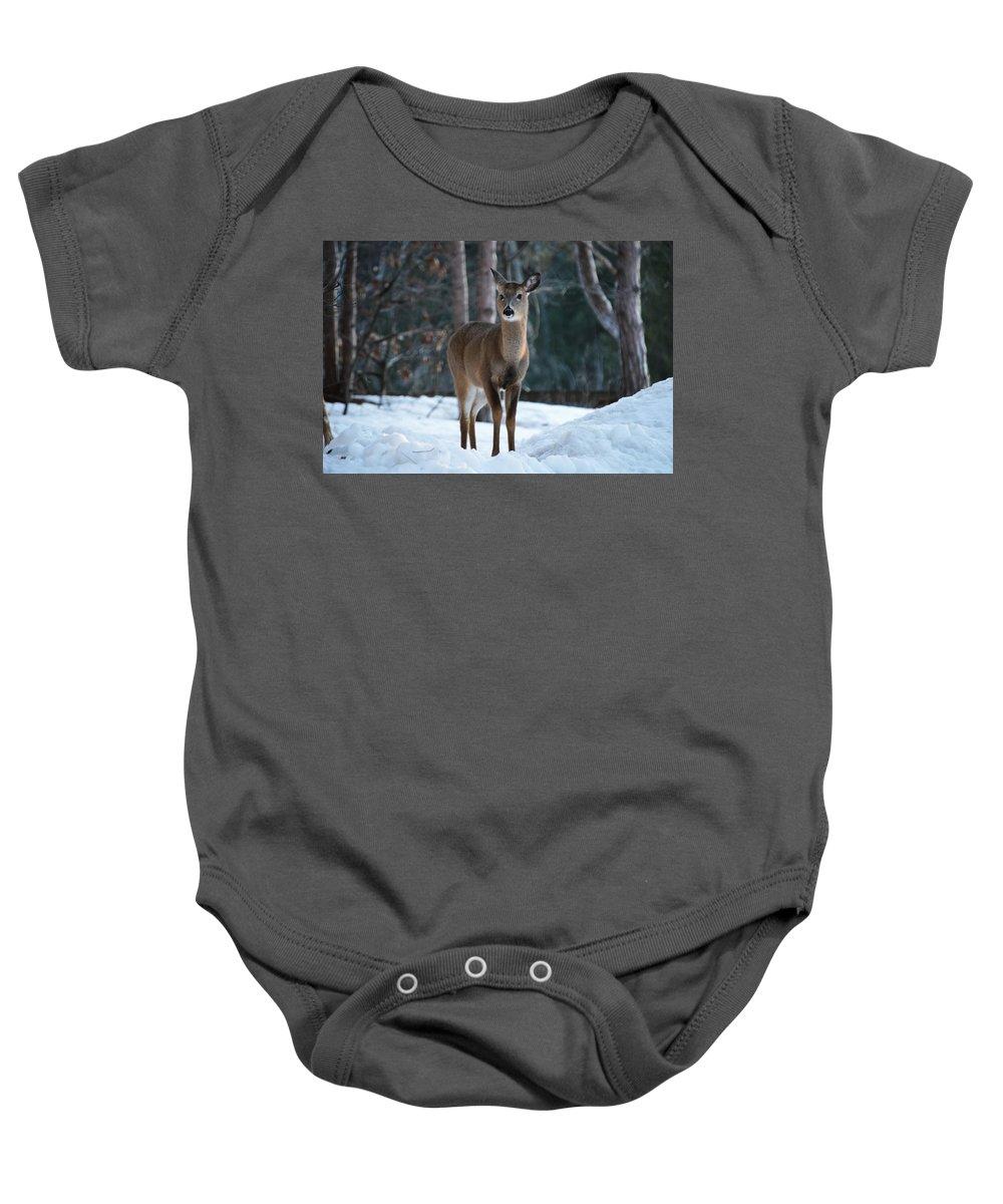 Michigan Baby Onesie featuring the photograph Standing Still by Linda Kerkau