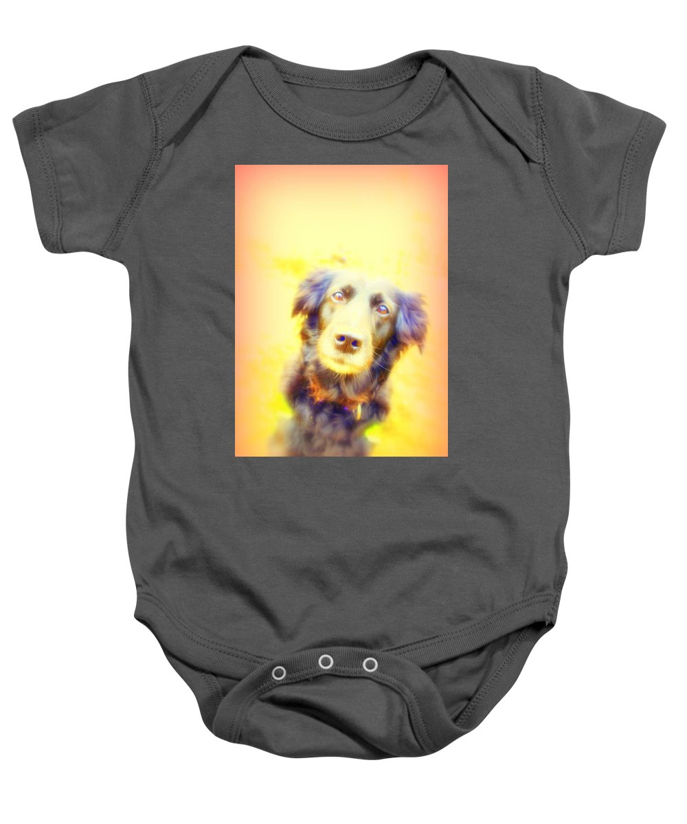 Dog Baby Onesie featuring the photograph Stay With Me Until I Walk Away, But I Will Never Go Anywhere Without You by Hilde Widerberg