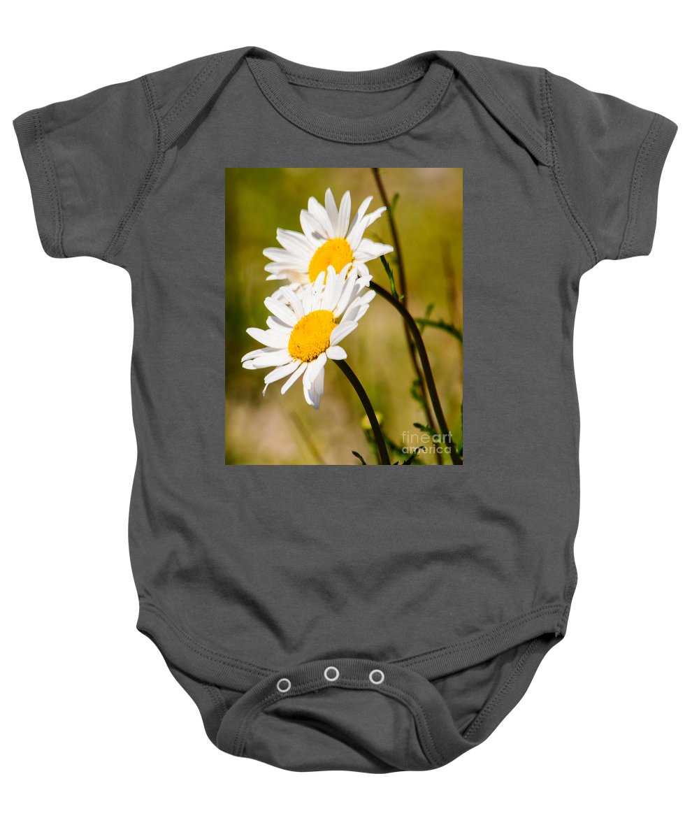 Daisy Baby Onesie featuring the photograph Sun Seekers by Tikvah's Hope