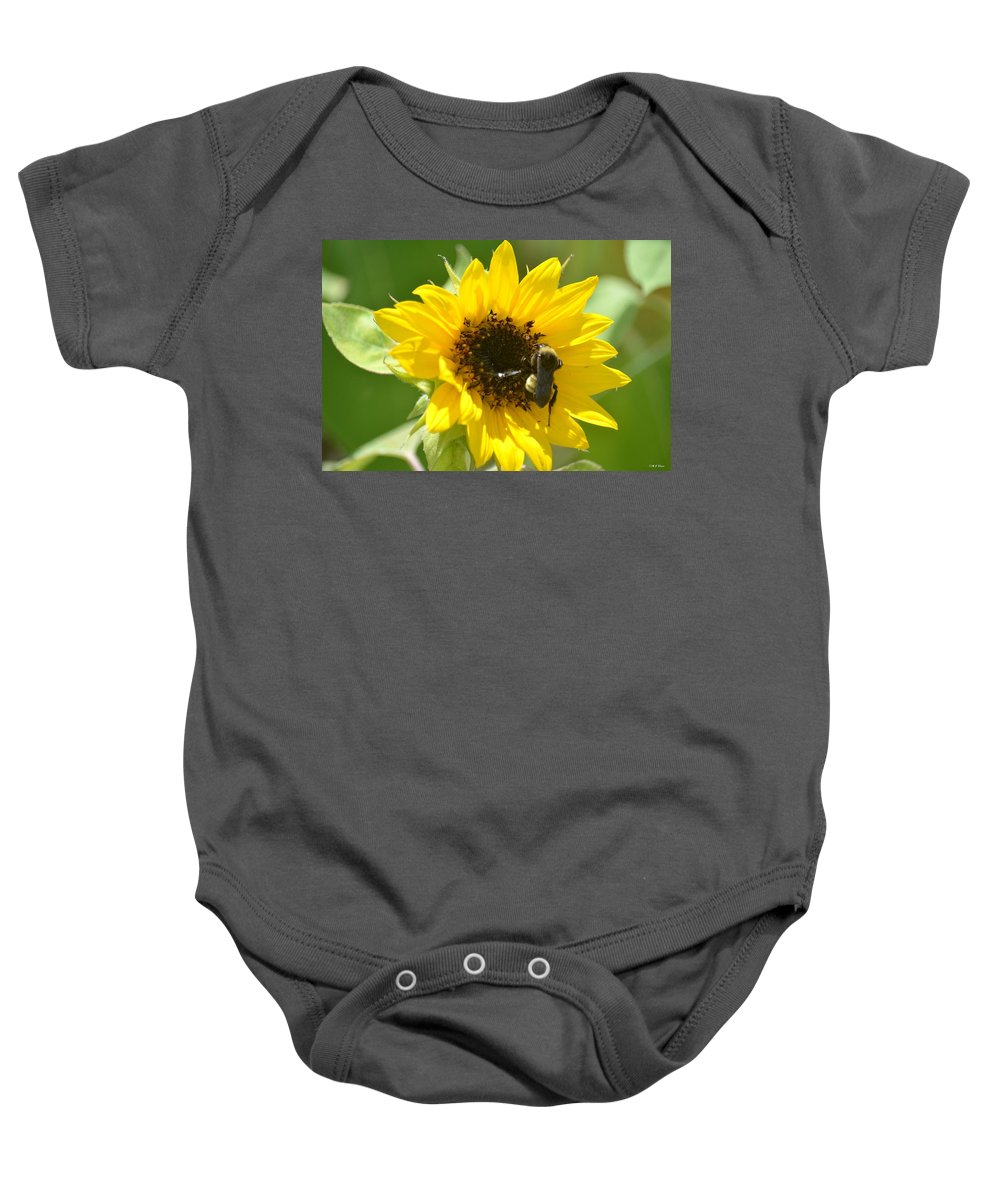 Sunflower And Bee Baby Onesie featuring the photograph Sunflower And Bee by Maria Urso