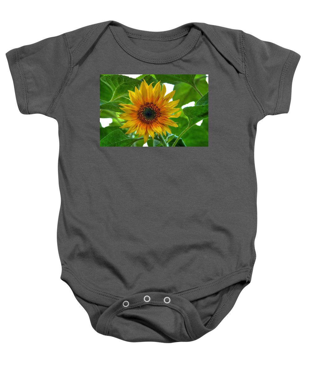 Sommer Baby Onesie featuring the pyrography Sunflower by Steffen Gierok