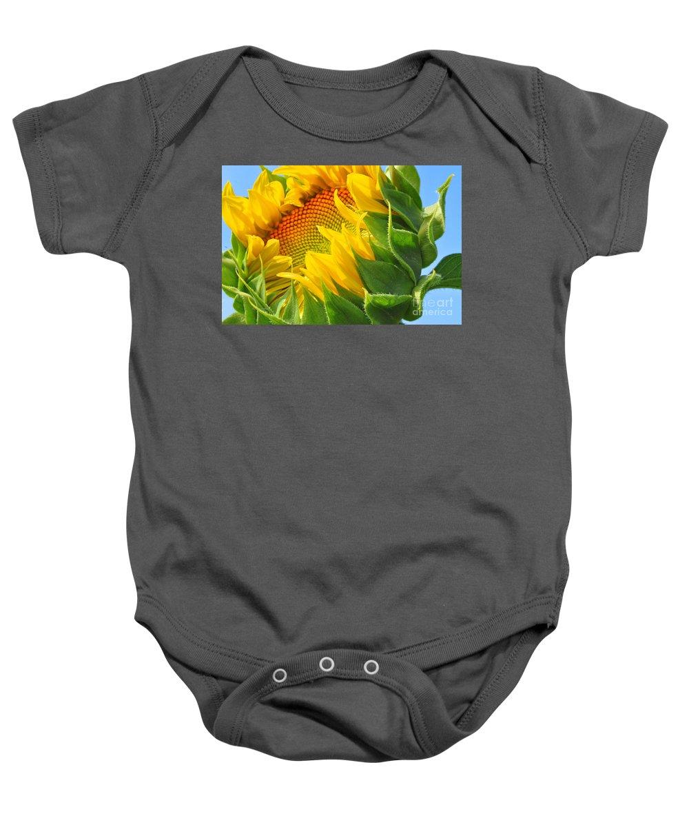 Sunflower Baby Onesie featuring the photograph Sunflower Unfolding by Regina Geoghan