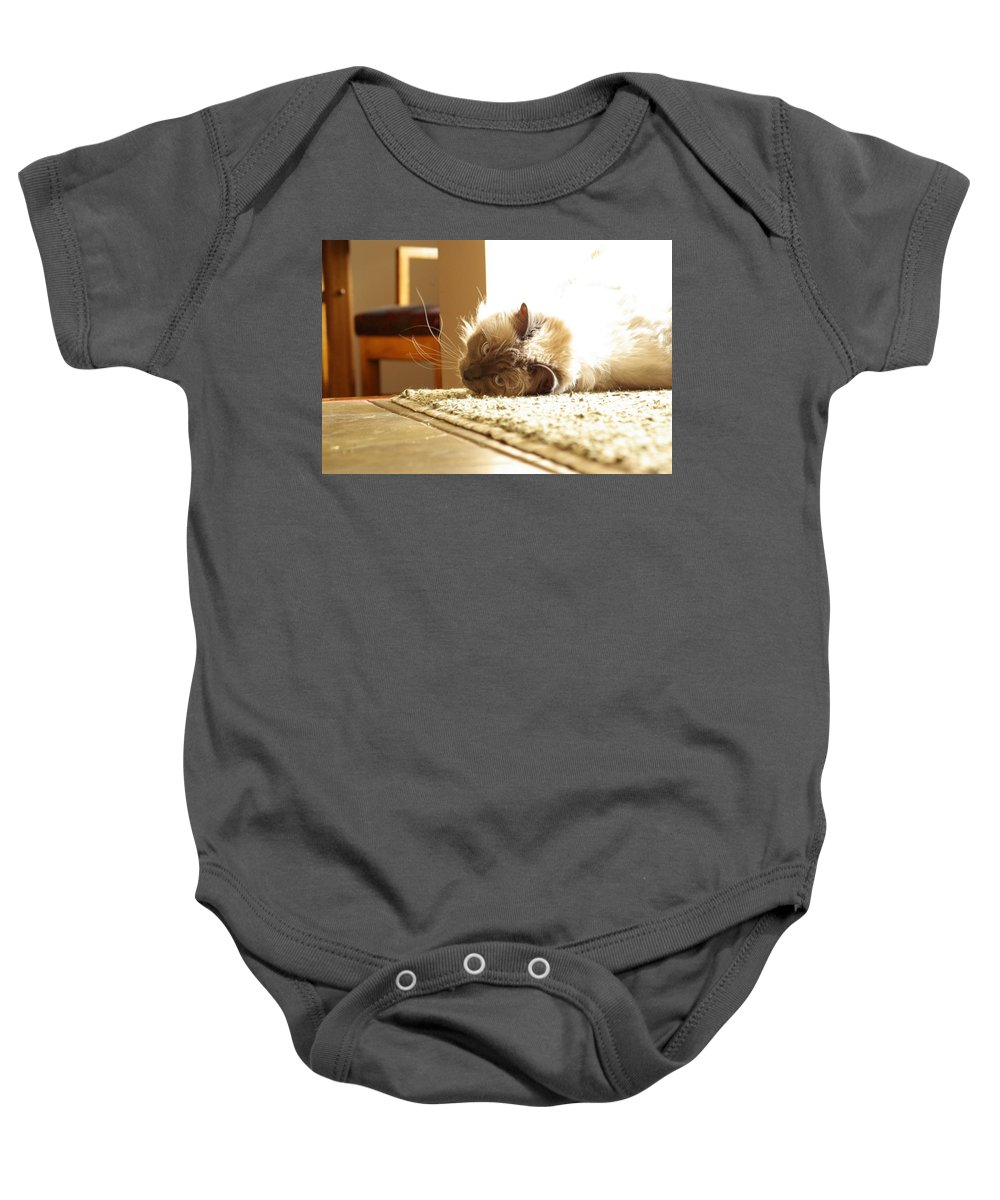 Cat Baby Onesie featuring the photograph Sunny Jack by Cindy Johnston