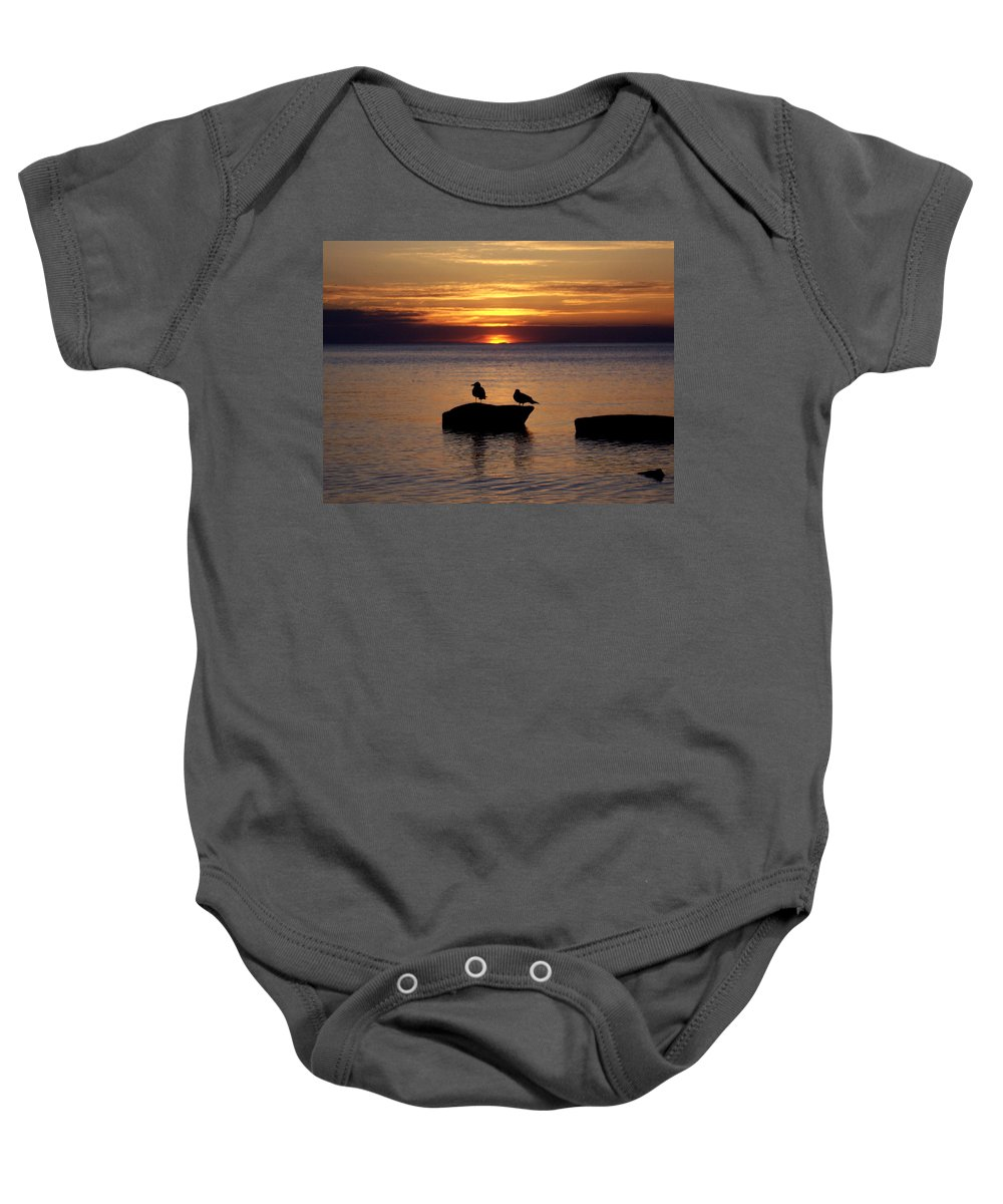 Seagulls Baby Onesie featuring the photograph Sunset On The Rocks by David T Wilkinson