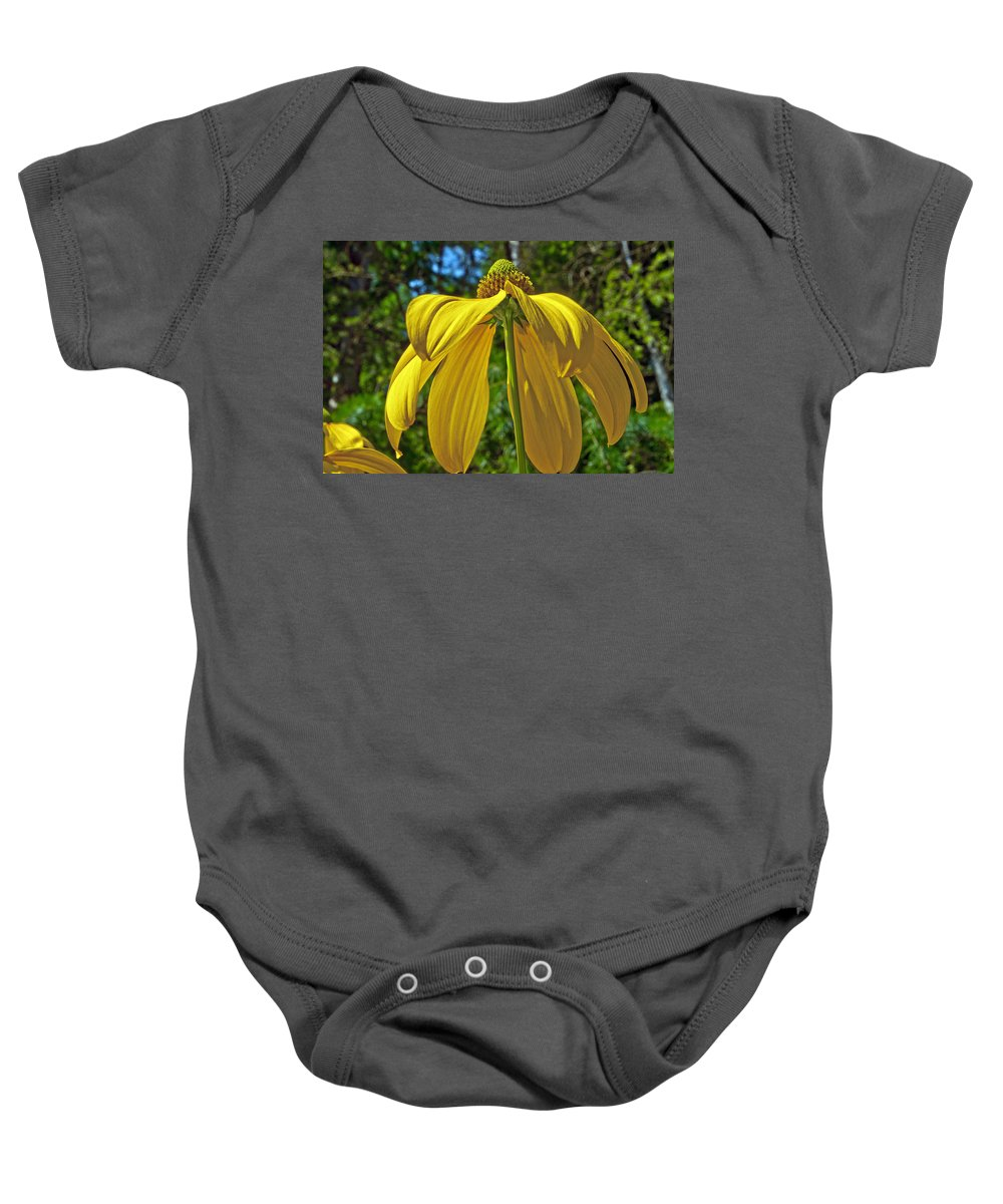 Garden Baby Onesie featuring the photograph Sunshine On My Shoulders by Tikvah's Hope