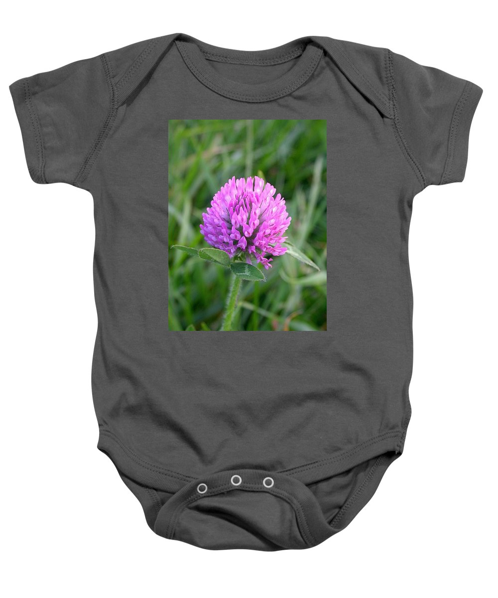 Sweet Clover Picture Baby Onesie featuring the photograph Sweet Pink Clover by Cynthia Wallentine