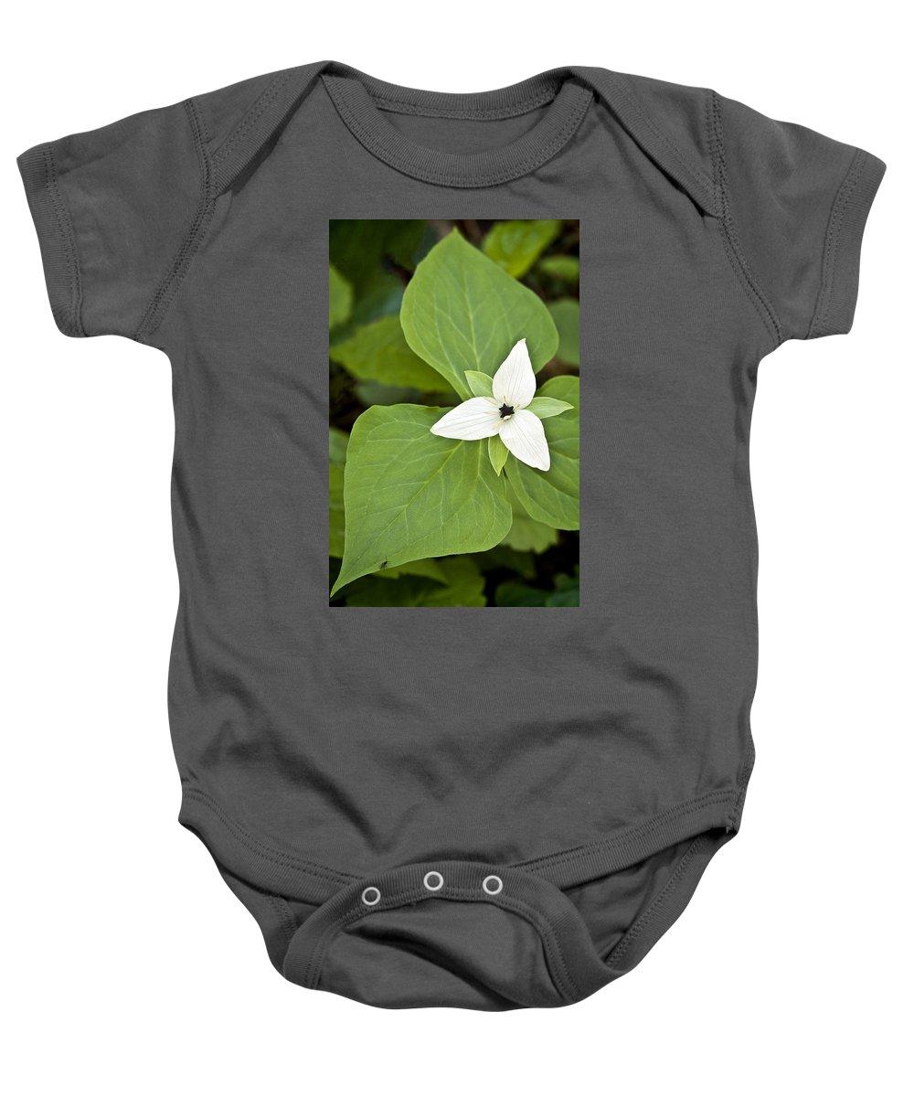 Sweet Baby Onesie featuring the photograph Sweet White Trillium by Shari Jardina