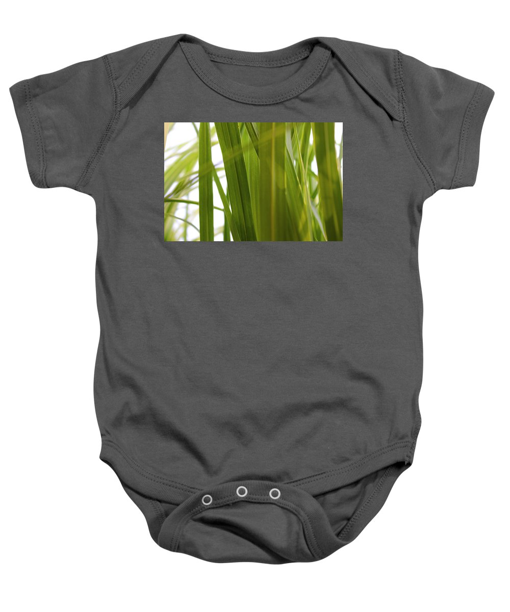 Grass Baby Onesie featuring the photograph Tall Grass by Carolyn Stagger Cokley
