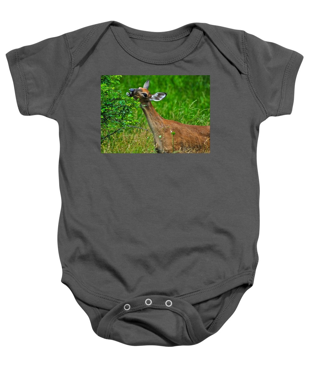 Deer Baby Onesie featuring the photograph The Dreaded Deer Giraffe by Frozen in Time Fine Art Photography