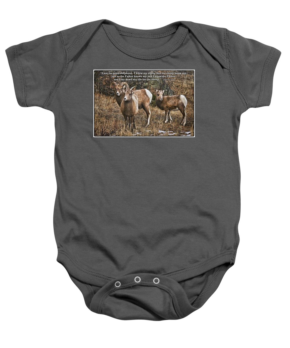 Rocky Mountain Bighorn Sheep Baby Onesie featuring the photograph The Good Shepherd's Sheep by Priscilla Burgers