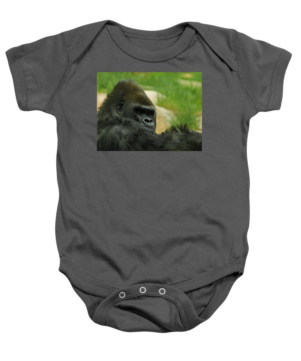 Animals Baby Onesie featuring the digital art The Gorilla 2 by Ernie Echols