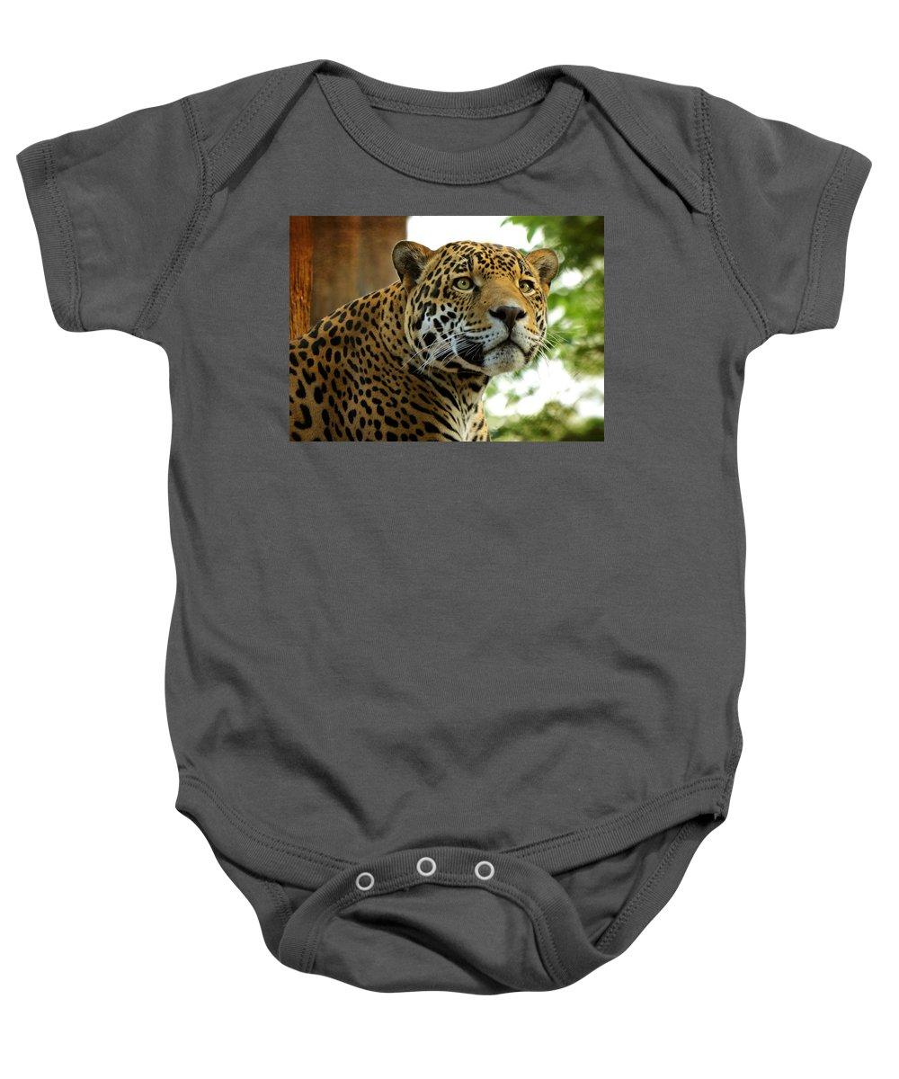 Jaguar Baby Onesie featuring the photograph The Jaguar by Saija Lehtonen