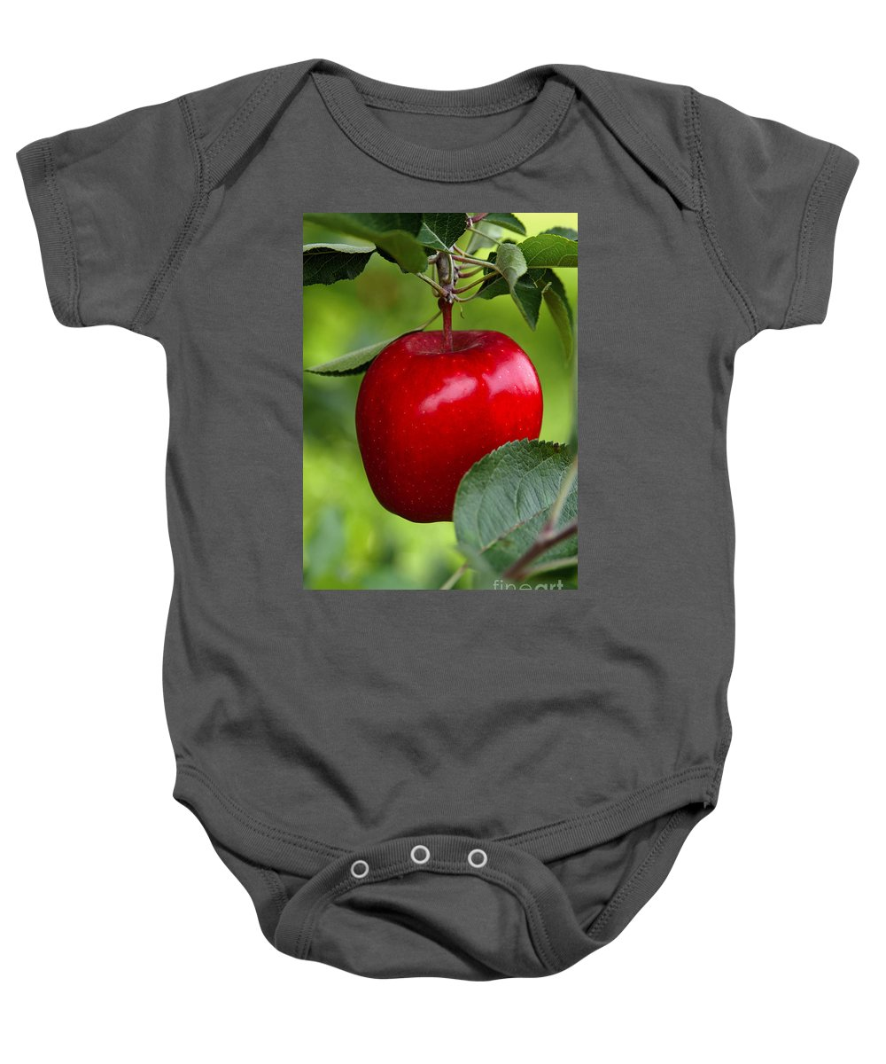 Apple Baby Onesie featuring the photograph The Red Apple by Anthony Sacco